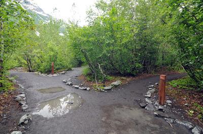 071512-36_Exit_glacier.jpg