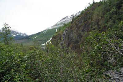 071512-39_Exit_glacier.jpg