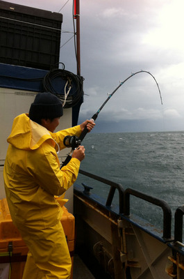 Hulibut_fishing_091912-09.jpg