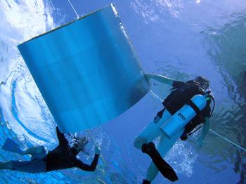 diving_052011-03.jpg