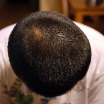 haircut_090910-03.jpg
