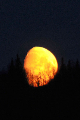 moon_042113-02.jpg