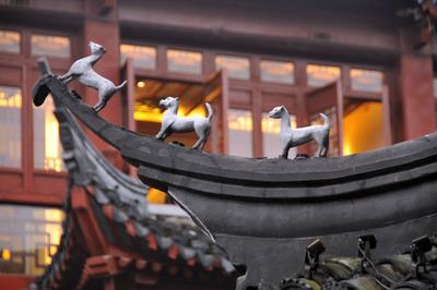 shanghai_121512-15.jpg