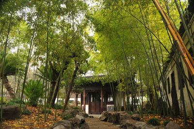 shanghai_yoen_121512-09.jpg