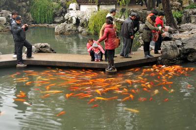 shanghai_yoen_121512-15.jpg